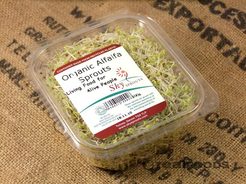 how to grow alfalfa sprouts commercially