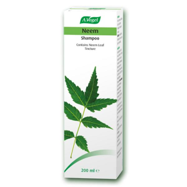 Herbal Shampoo ORGANIC