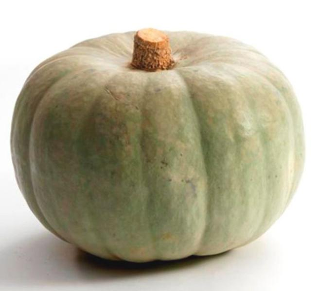Organic Crown Prince Squash In Kg From Real Foods