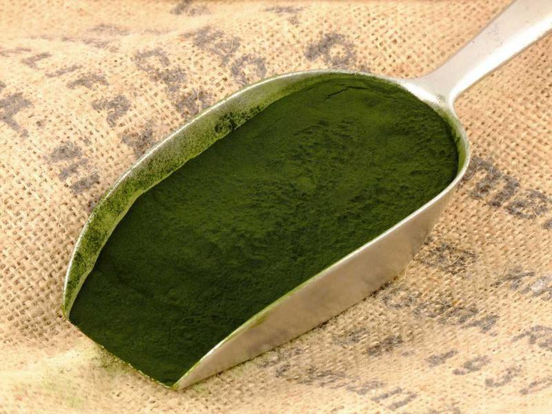 Organic Chlorella Powder From Real Vitality Superfoods Buy