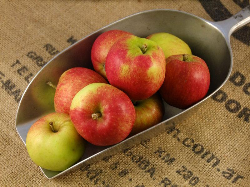 Braeburn Apples ORGANIC