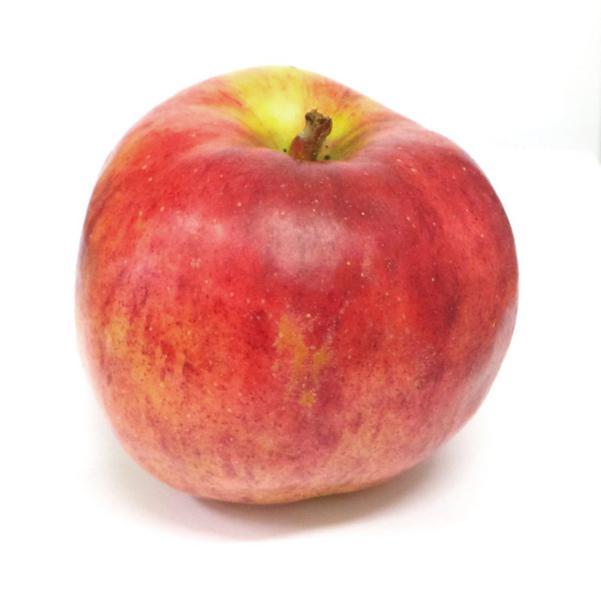 Scrumptious Apples ORGANIC