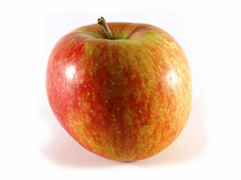 Organic Elstar Apples from Real Foods