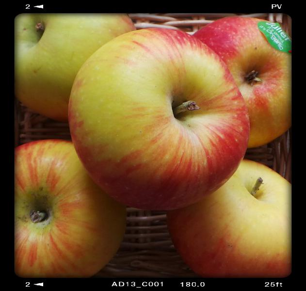 Juliet Apples ORGANIC