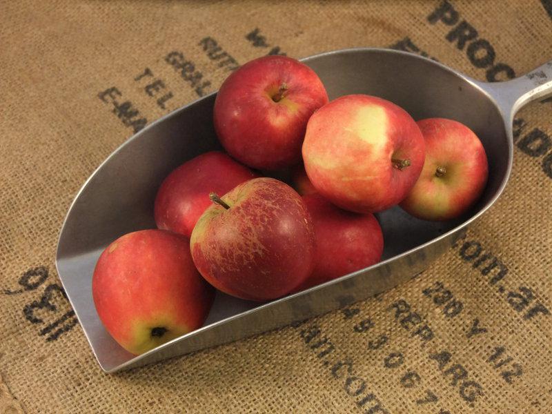 Spartan Apples ORGANIC