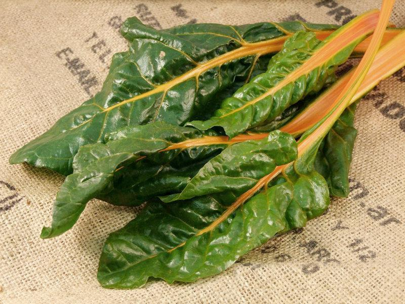 Swiss Chard UK ORGANIC