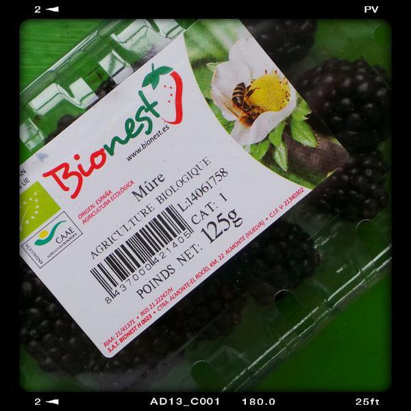 Blackberries ORGANIC image 2