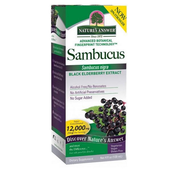 Black Elderberry Supplement Sambucus