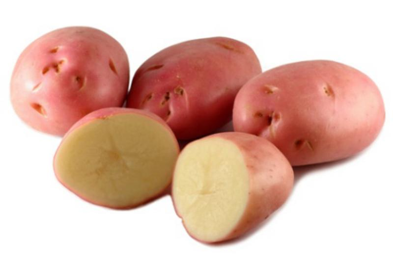 Organic Desiree Potato Red in kg from Real Foods