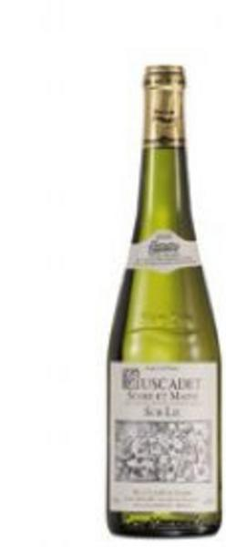 White Wine Muscadet France 12% Vegan, ORGANIC