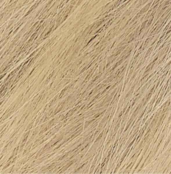 Permanent Hair Colourant Honey Blonde 9N Vegan image 2