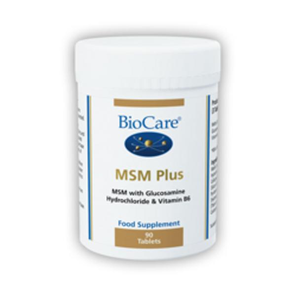 MSM Plus Supplement Vegan