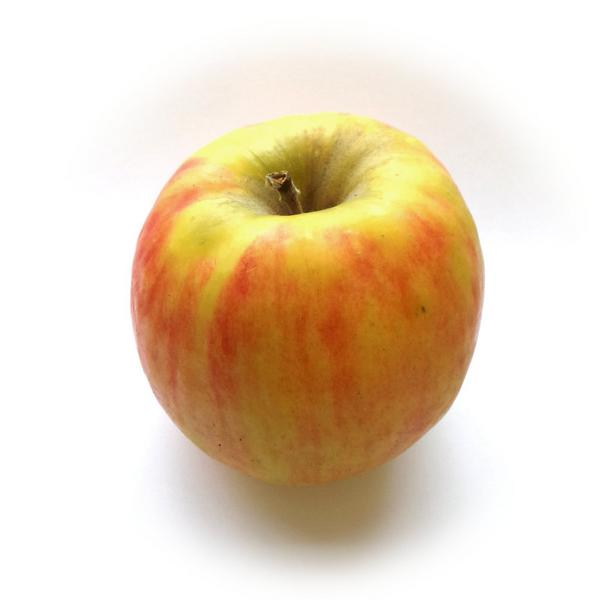 Cripps Pink Apples ORGANIC