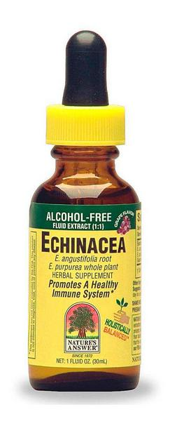 Echinacea Root Extract Alcohol Free No Gluten Containing Ingredients
