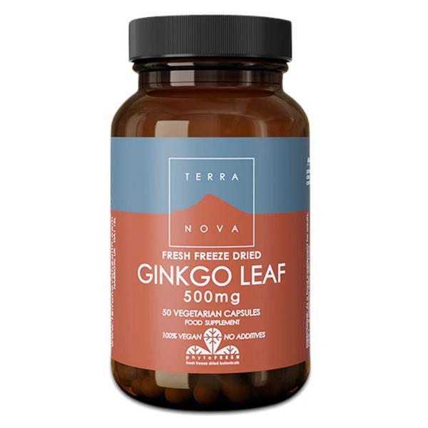 Ginkgo Biloba 500mg Magnifood Vegan