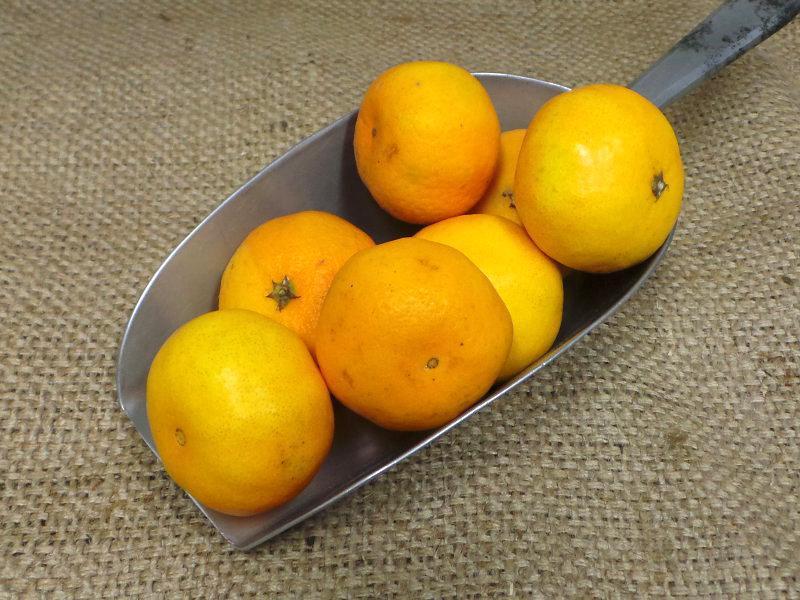 Clementine ORGANIC