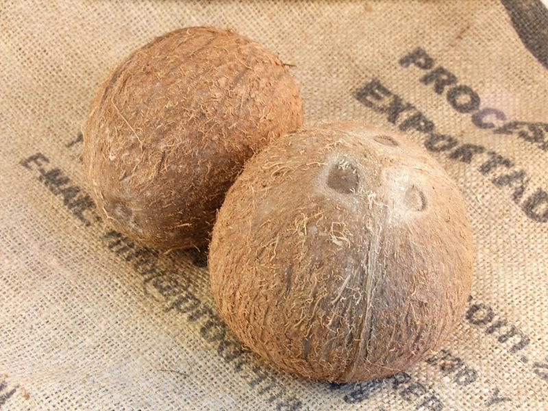 Coconut ORGANIC