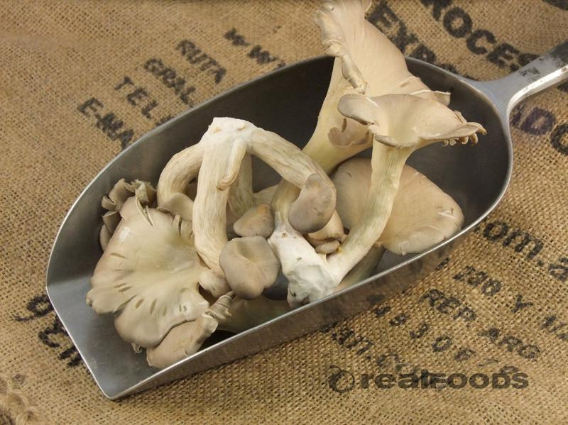 Oyster Mushrooms ORGANIC