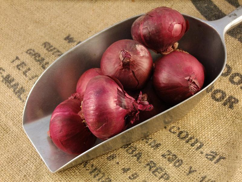 Red Onions ORGANIC