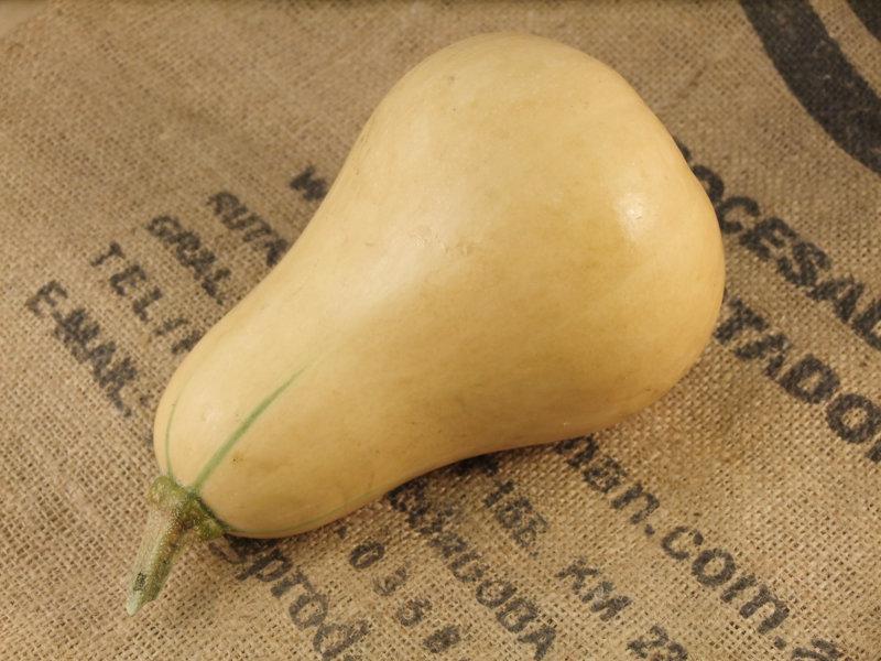 Butternut Squash ORGANIC