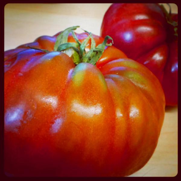 Marmande Tomatoes ORGANIC image 2