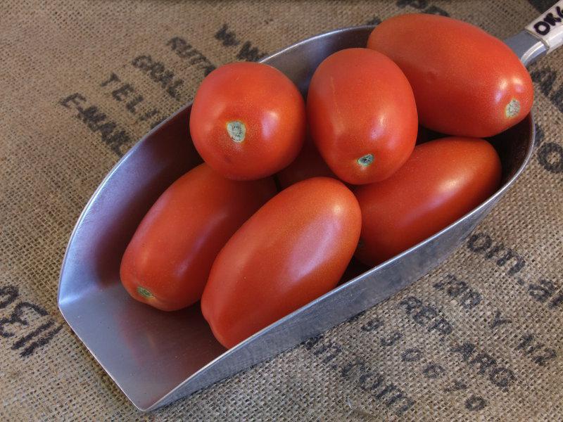 Roma Tomatoes ORGANIC