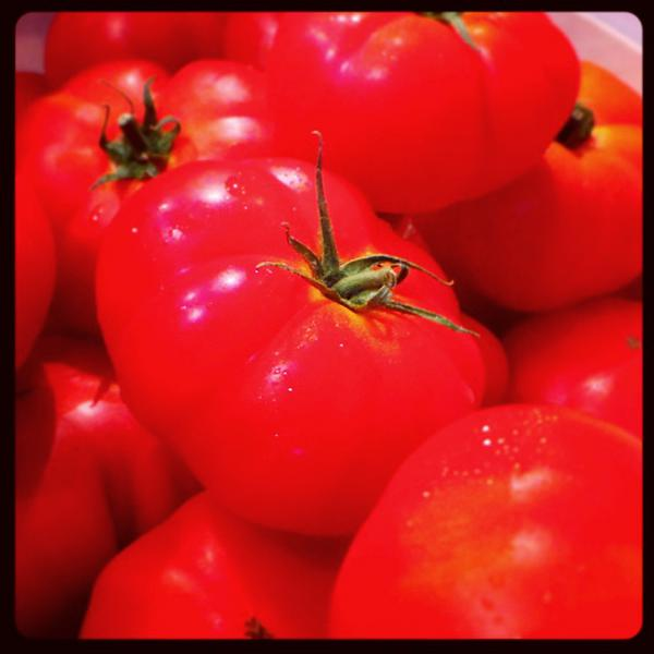 Rebellion Tomatoes ORGANIC