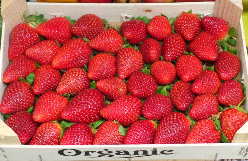 Strawberries ORGANIC