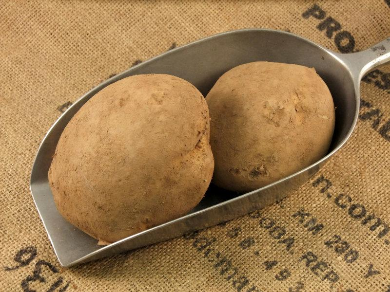 Baker Potato ORGANIC