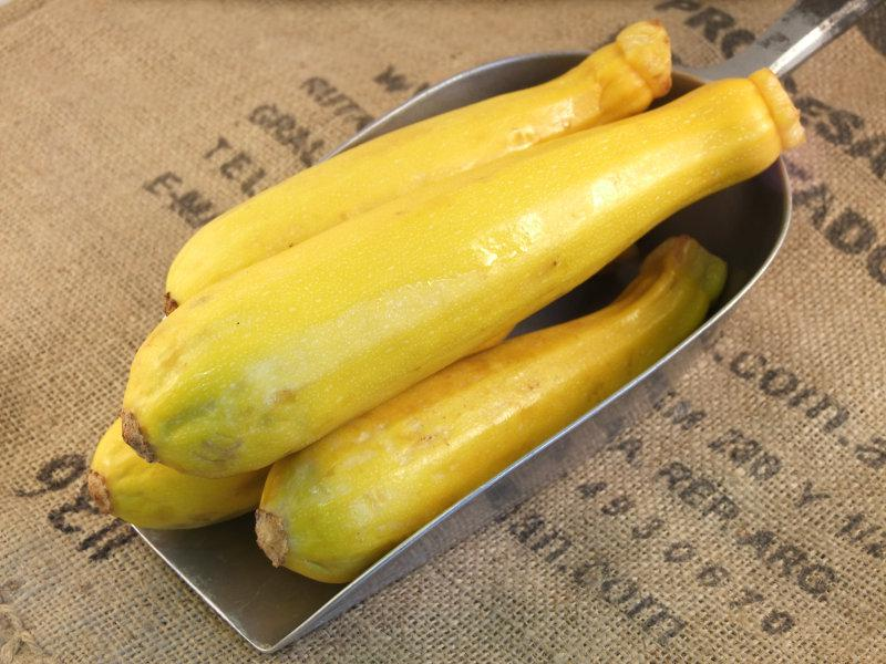 Yellow Courgette ORGANIC