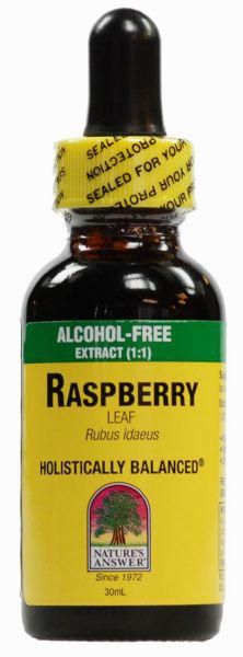 Red Raspberry Leaf Extract