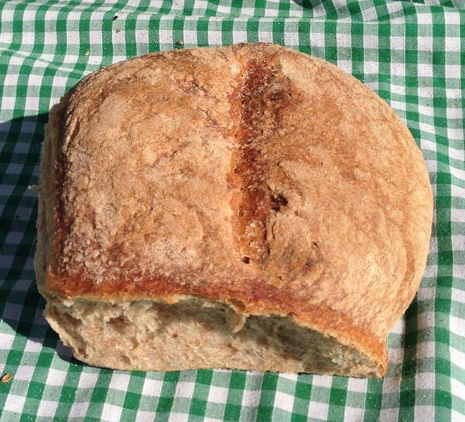 Sourdough Cob Bread