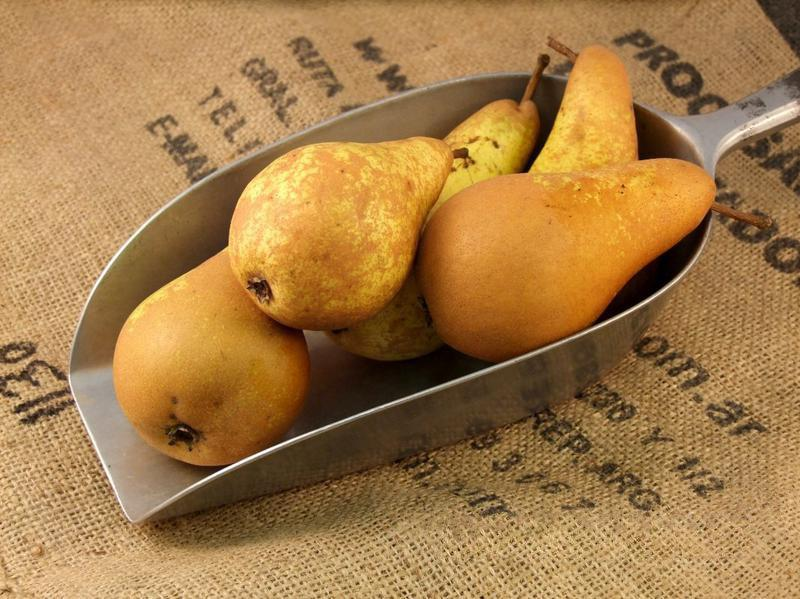 Conference Pears ORGANIC