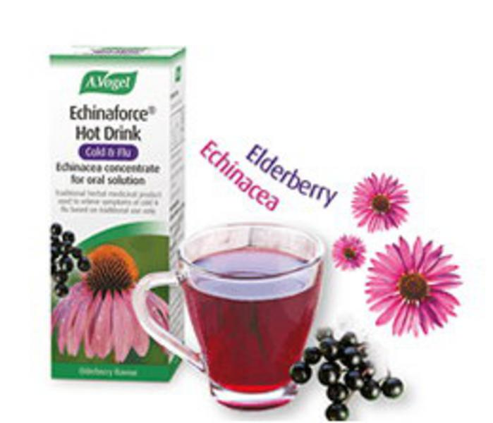 Echinaforce Hot Drink Echinacea Elderberry Vegan, ORGANIC image 2