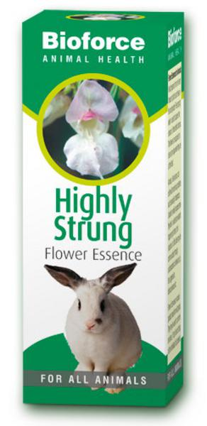Highly Strung Essence for Pets Tincture Vegan, ORGANIC