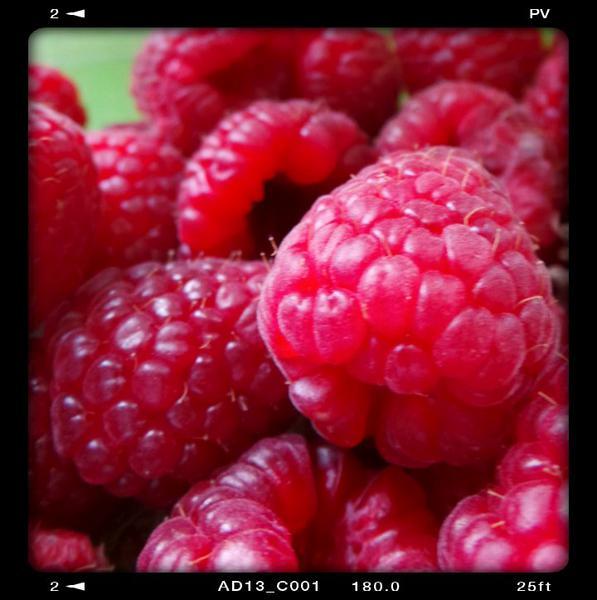 Raspberries ORGANIC