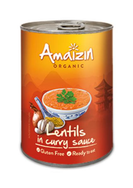 Lentils in Curry Sauce ORGANIC