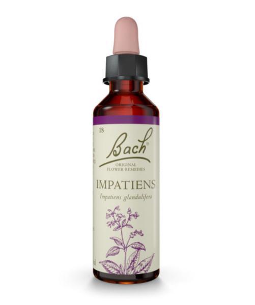 Flower Remedy Impatiens Bach