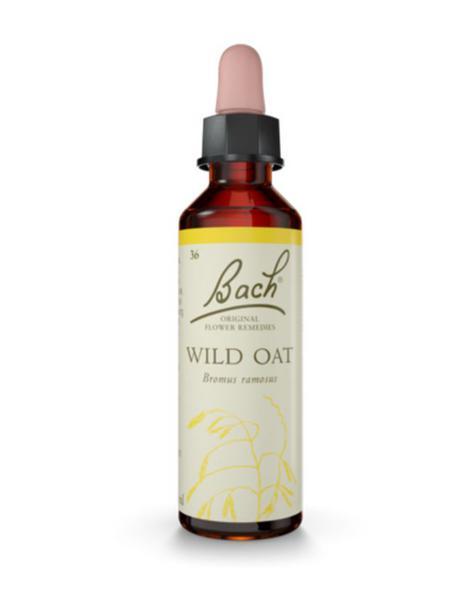 Flower Remedy Wild Oat Bach