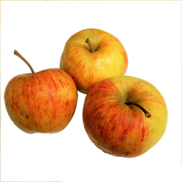 Epicure Apples ORGANIC