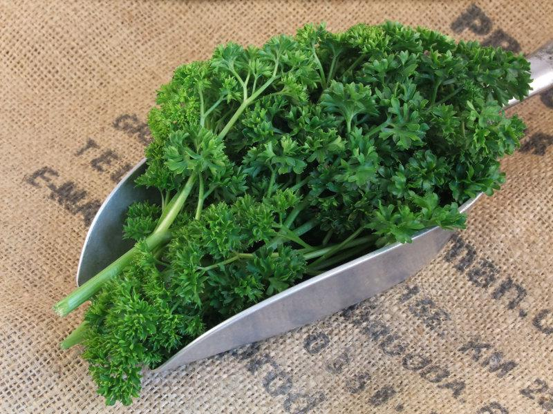 Fresh Curly Parsley ORGANIC