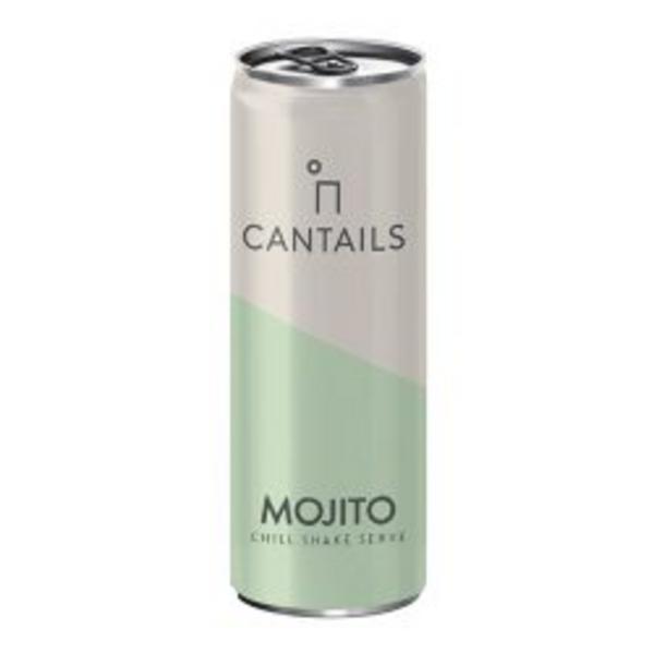Alcoholic Mojito Drink