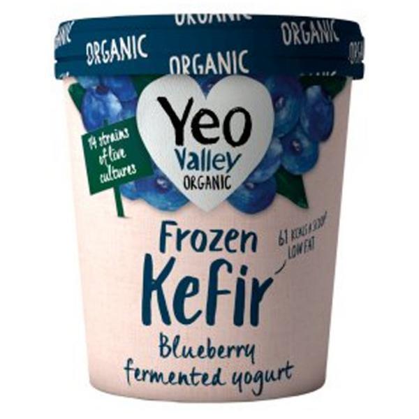 Frozen Yoghurt Kefir Blueberry ORGANIC