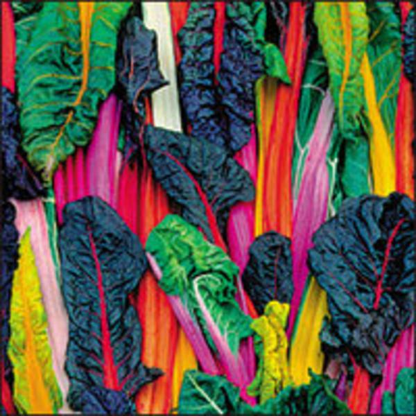 Organic Rainbow Chard In 150g From Real Foods