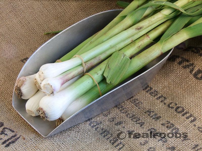 Fresh Garlic ORGANIC