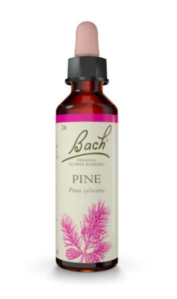 Flower Remedies Pine