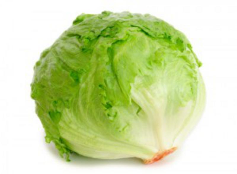 Iceberg Lettuce ORGANIC