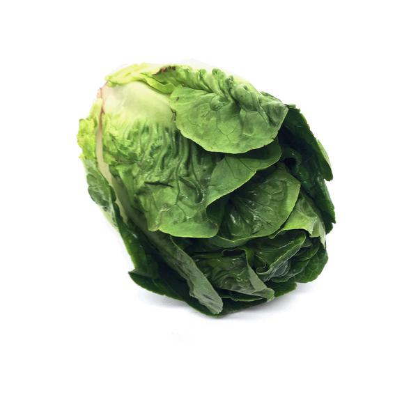 Little Gem Lettuce UK ORGANIC