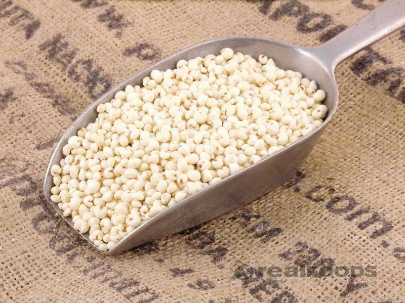 Millet Puffed Cereal no added salt, no added sugar, wheat free, ORGANIC