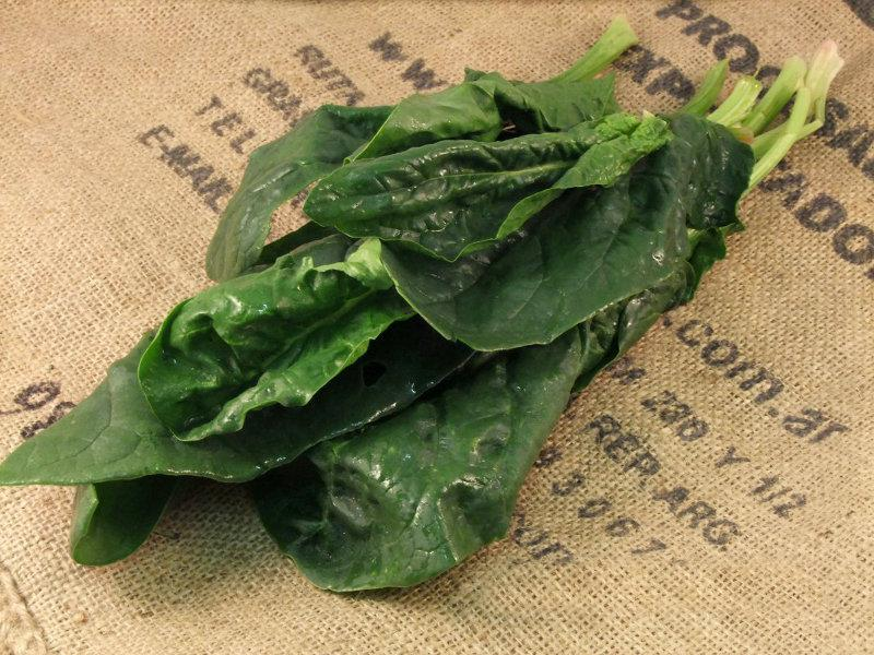 Spinach Scotland ORGANIC